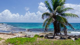 icone region corn island - zone Caraibes