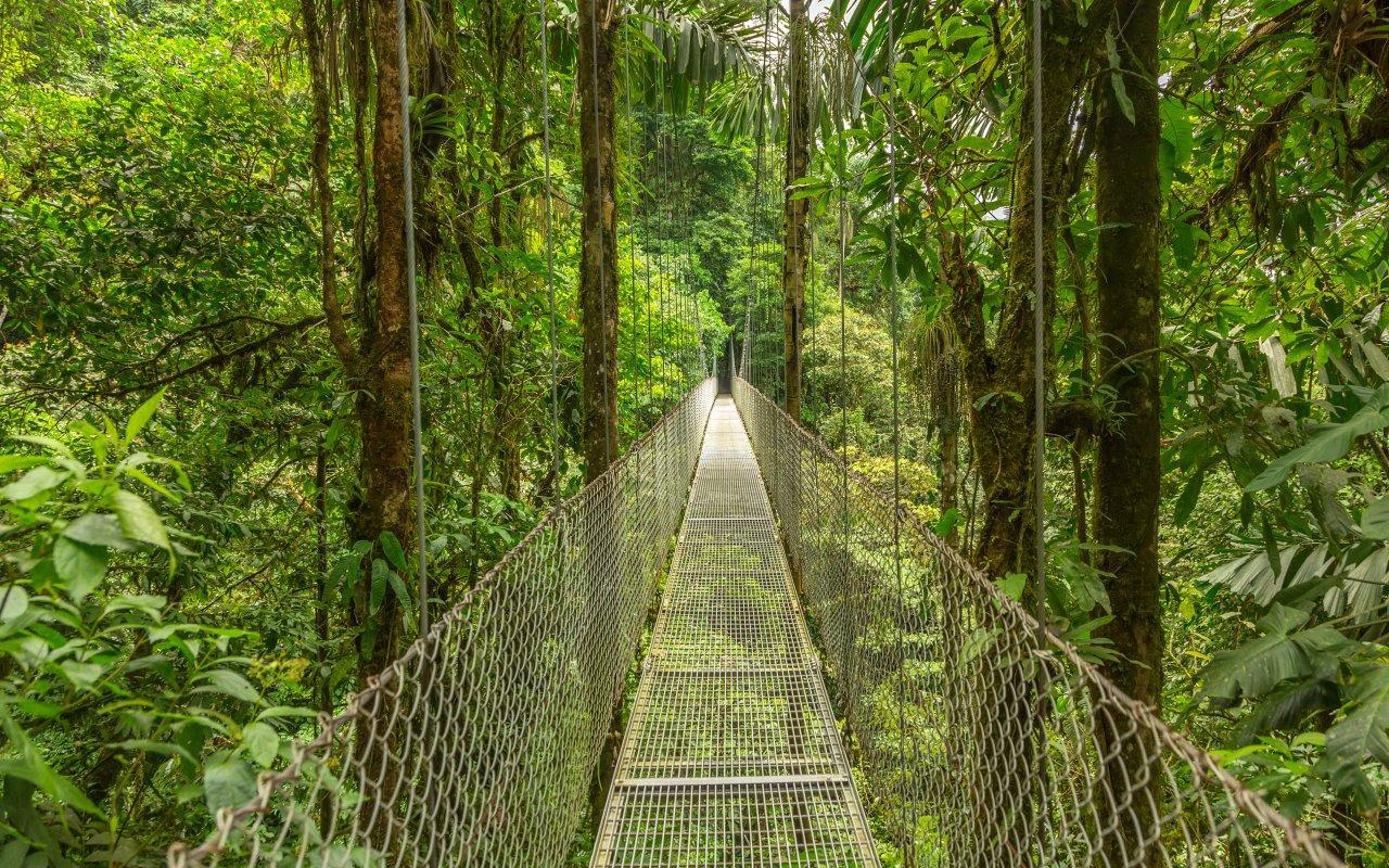 Costa Rica - Pont suspendu