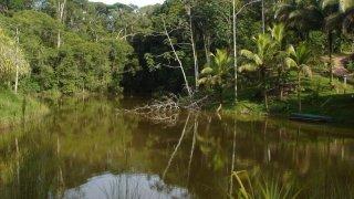 Costa Rica - Boca Tapada